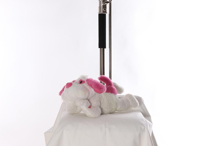 Stuffed Dog Image
