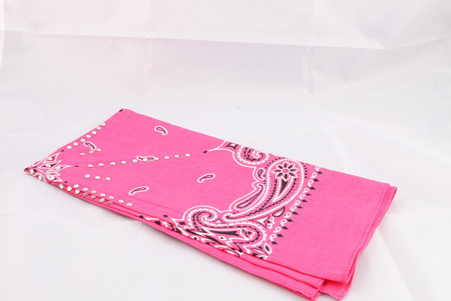 Pink Bandana Image