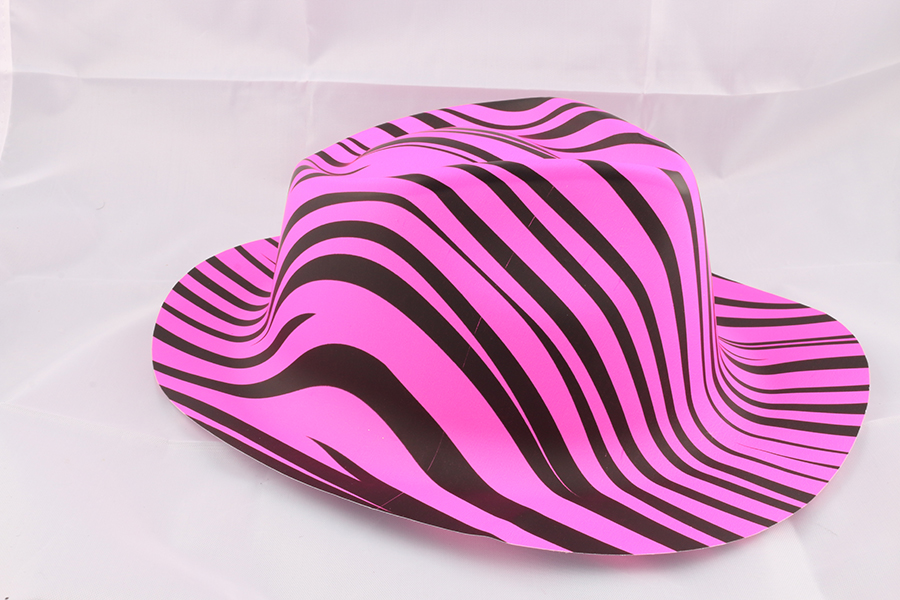 Pink Zebra Party Hat Image
